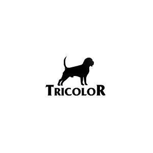 Karma dla beagle - Tricolor